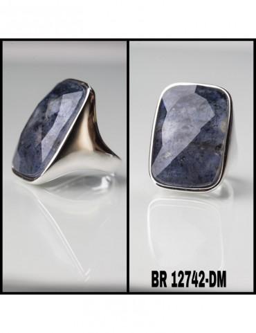 BR12742-DM.jpg
