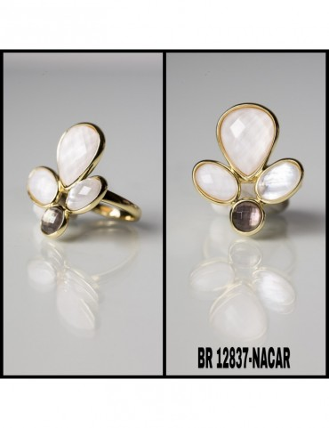 BR12837-NACAR.jpg